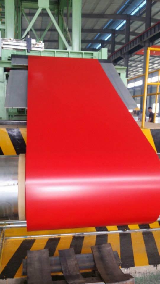 Prime PPGI Steel sheet/Coil
