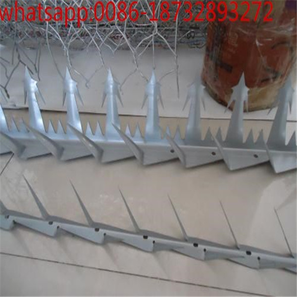 PVC coated or hot-dipped glvanized climb wall spikers