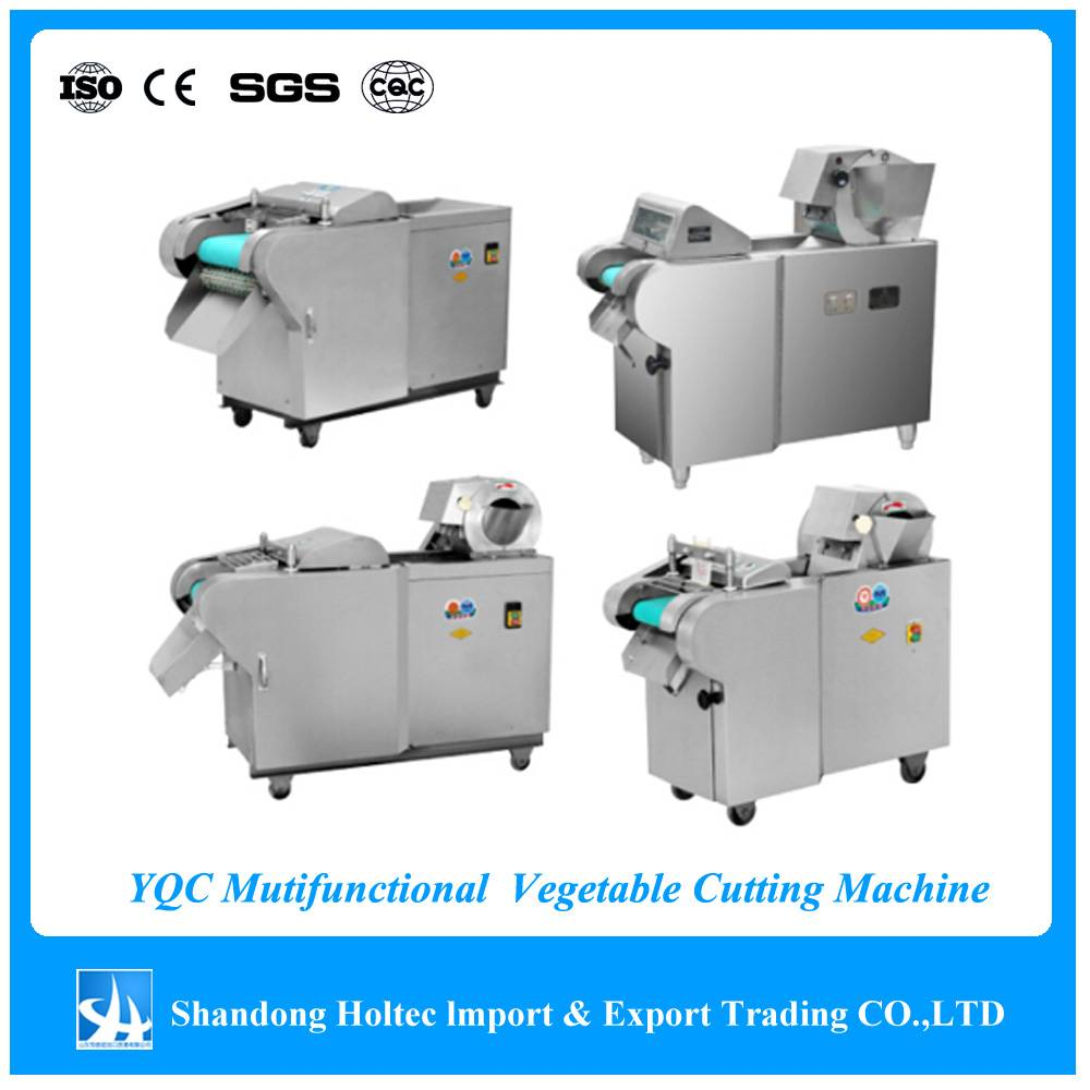 YQC Multifunctional Vegetable /Fruit Cutting machine