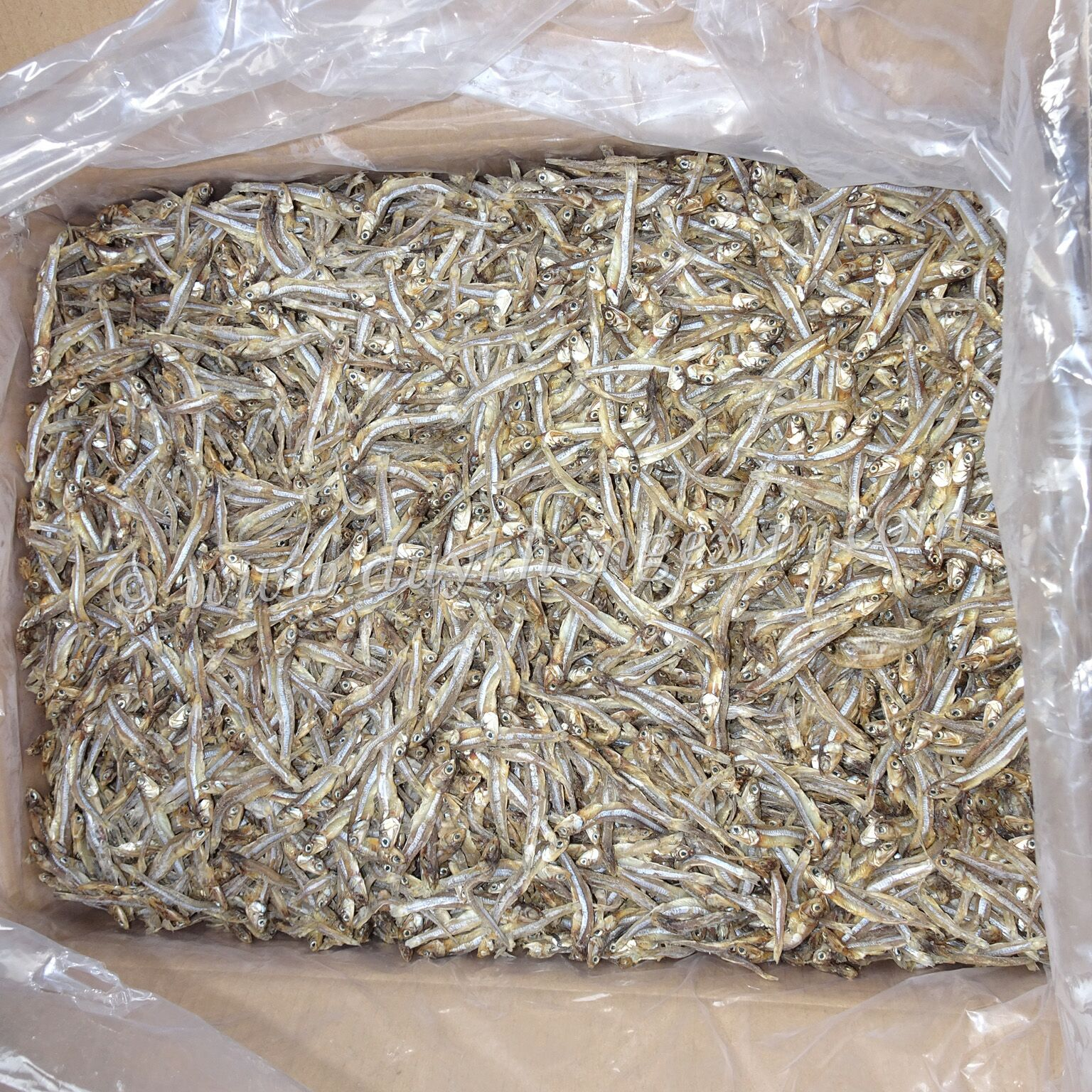PREMIUM DRIED ANCHOVIES WITH ATTRACTIVE PRICE