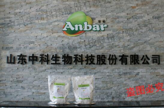 Food Stabilizer Curdlan Gum ,Natural food ingredient