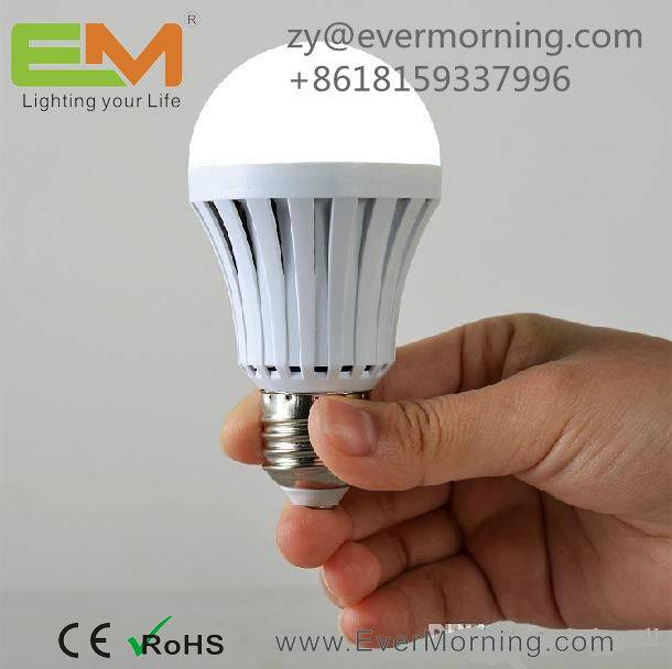 7W Rechargeable LED Bulb Light
