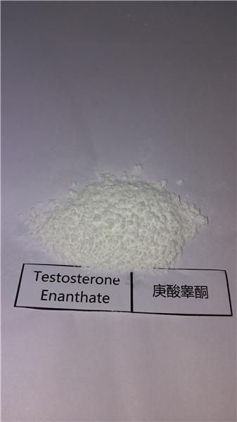 99% Purity Bodybuilding Steroid Powder Testosterone Enanthate /Test E CAS No. 315-37-7