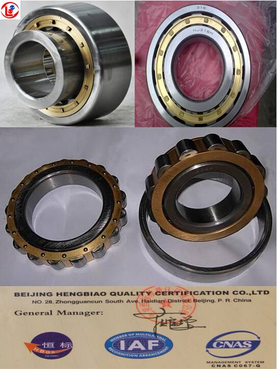 Cylindrical Roller Bearing NU,N,NJ,NF,NUP,NH Type