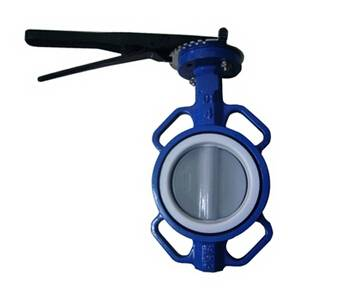 Wafer Butterfly Valve Disc Coated Nylon