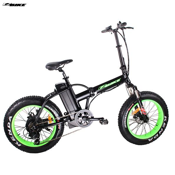 Electric Bike TDM20
