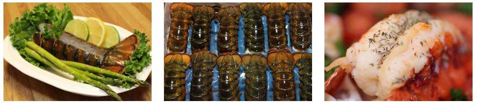 Atlantic Canada Lobster Tails