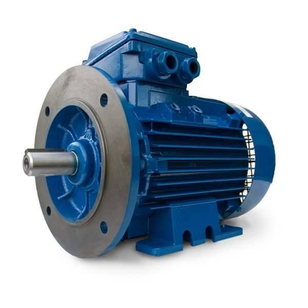 Elektrim Motor