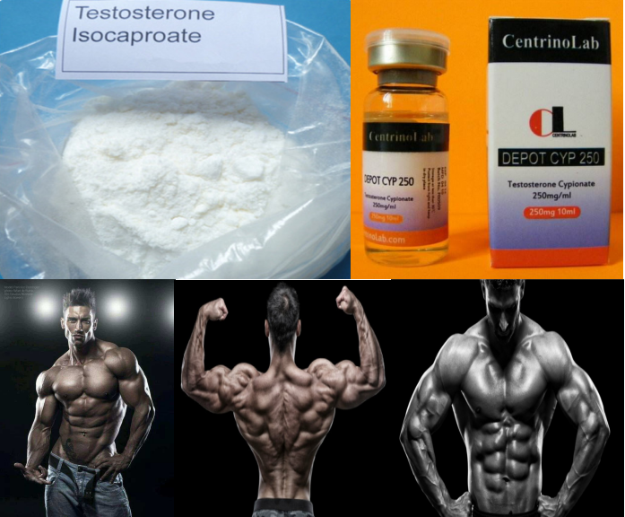99.0% high purity Testosterone Isocaproate/Test Iso raw steroid powder for muscle building Sustanon