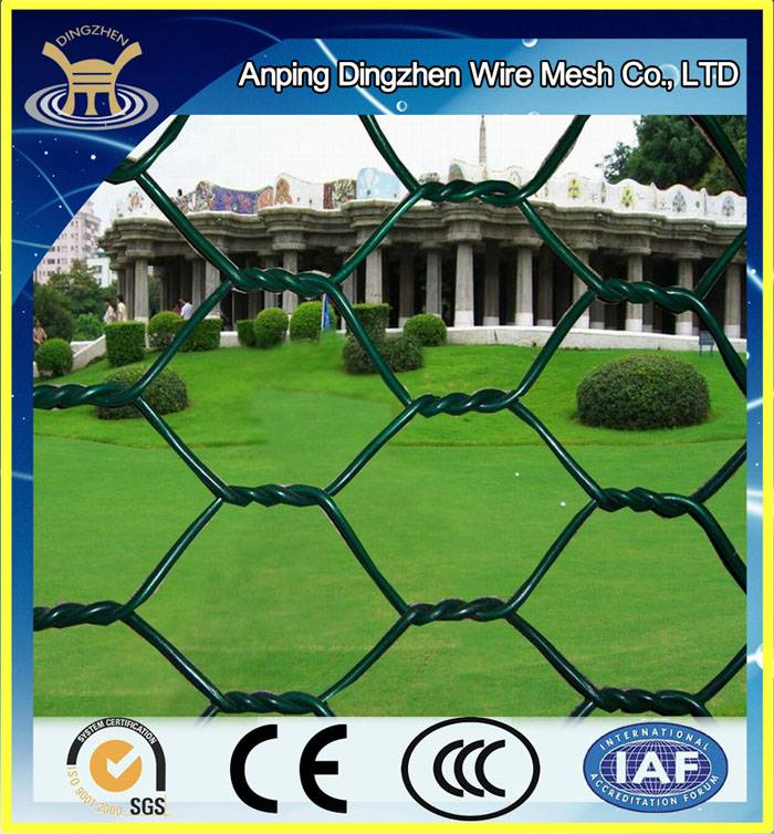 Europe Best Selling PVC Coated Hexagonal Wire Mesh For Sale