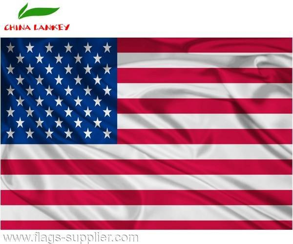 Commercial Advertising Inexpensive Cost Polyester American Flag