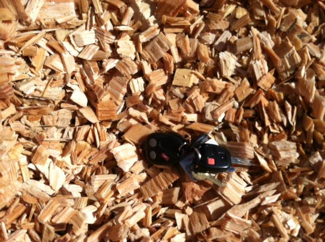 USA Southern Wood Pine Chips