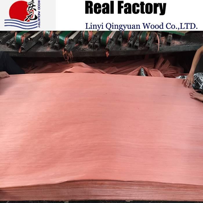 engineered red birch wood veneer factory supply plywood face veneer