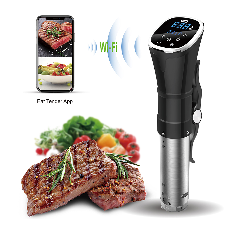 Use W Vacuum Sealer Bluetooth WIFI Immersion slow Circulator Sous Vide machine Precision Cooker