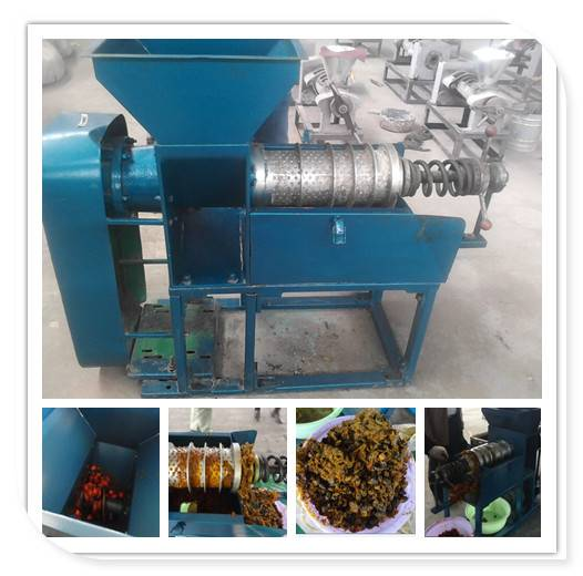 Professional Automatic Palm Oil Press Machine
