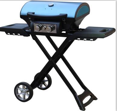 2 burner gas grill barbecue