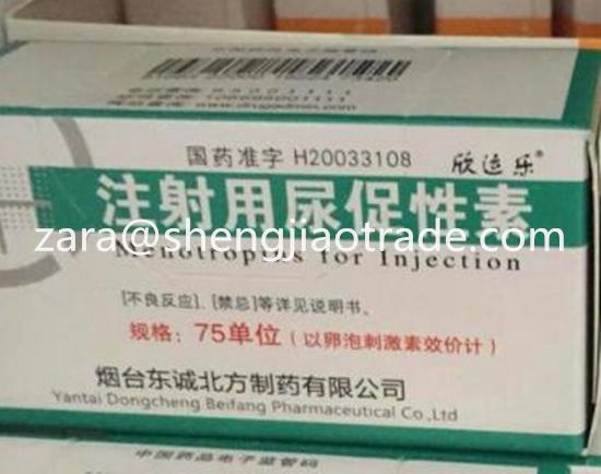 Hot sale 99% purity HMG hmg,Menotropin for InjectionWhatsApp:+86 18303081441