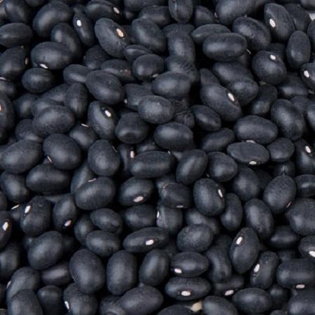 good quality grade black bean whole sale price