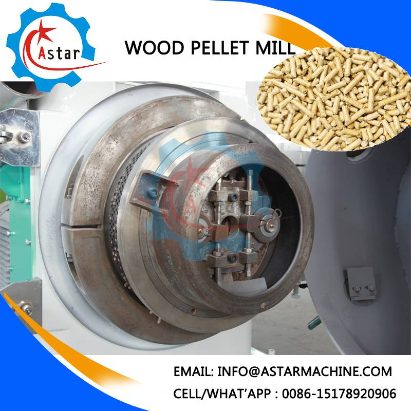 6-10mm Size Wood Pellet Machine Supplier in China
