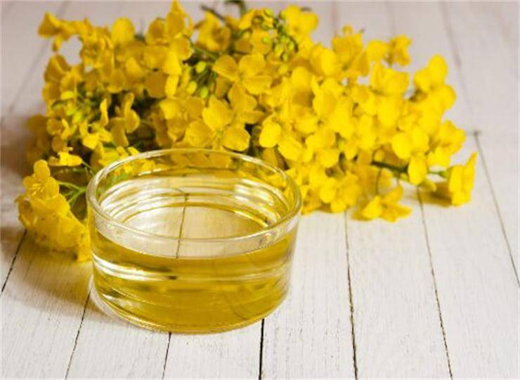100% Grade a Rapeseed Oil From China