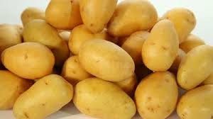 Fresh potatoes all types and sizes