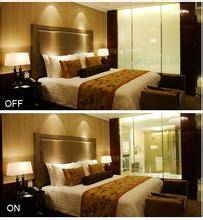 Smart glass,switchable glass,electric privacy glass