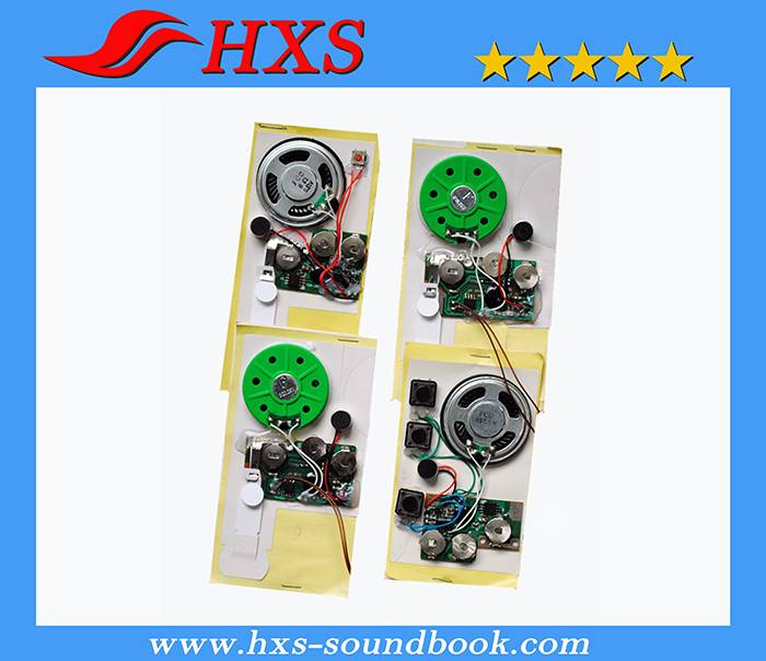 China Wholesale Recordable Greeting Card Sound Chip