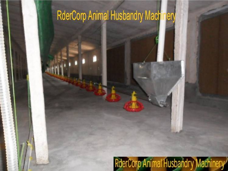 Newly poultry equipments of automatic broiler and chicken feeding system