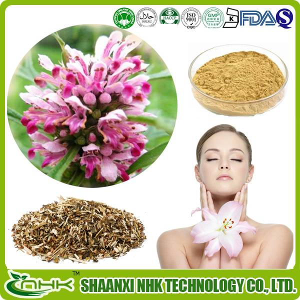 100% Top quality natural and pure Motherwort Extract Stachydrine