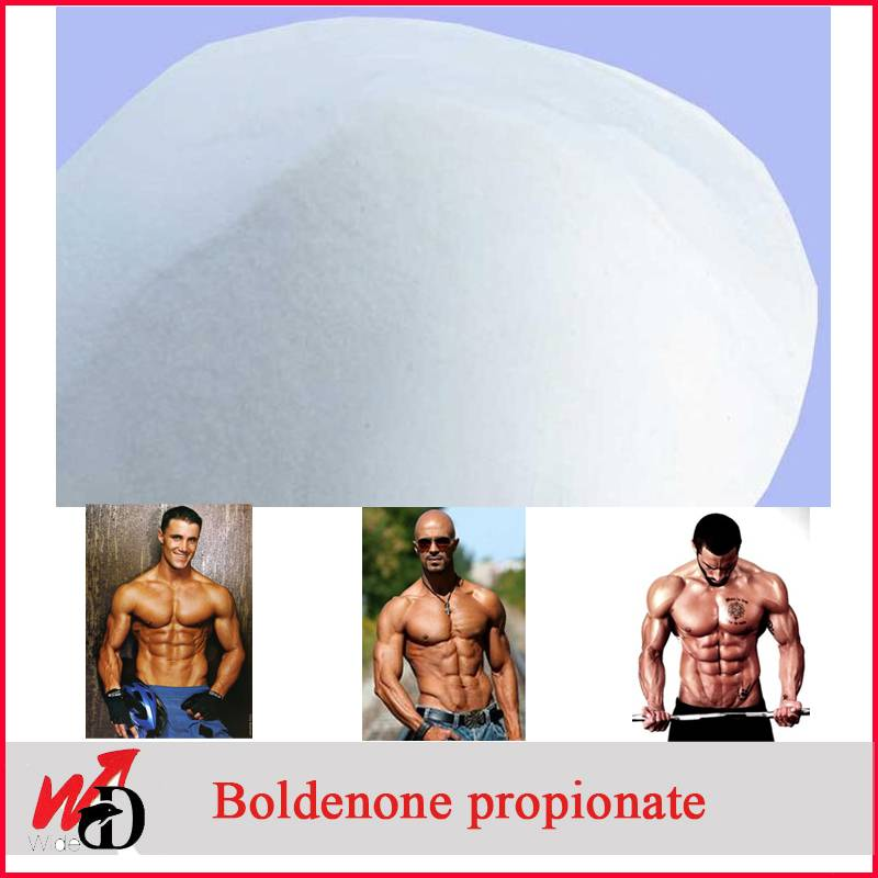 White Powder Increase Muscle Boldenone Propionate 13103-34-9