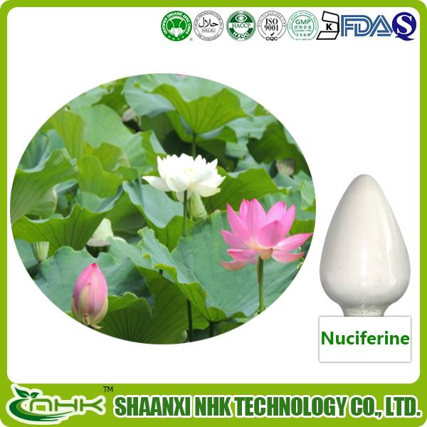 Weight Loss High Quality 100% Natural Nuciferine, Lotus Leaf Extract