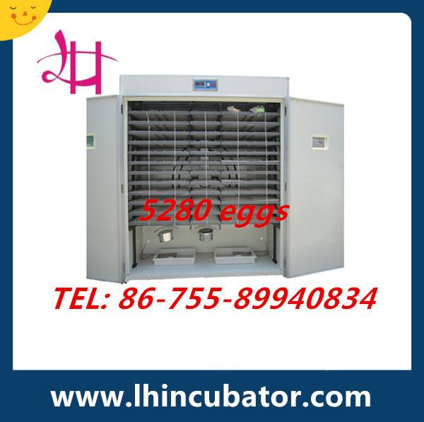 Holding 5000 Eggs Perfect Performance Commercial Chicken Egg Incubator Hatcher For Sale (Setter Comb