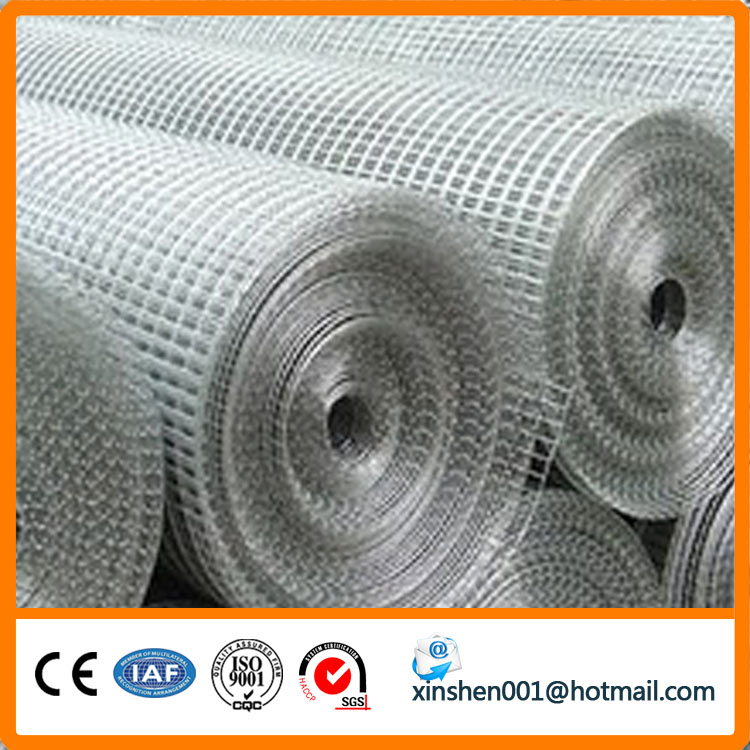 Cheap galvanized welded wire mesh with good quality welded wire mesh panel (manufacturer)