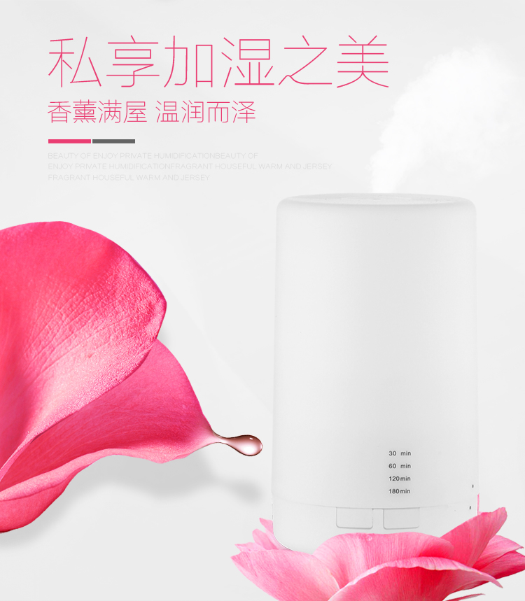 Purifier Humidifier Air Ultrasonic essential oil aroma Diffuser