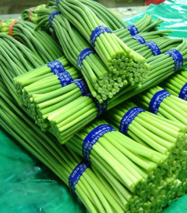 the supplier of fresh vegetable young garlic shoot from china