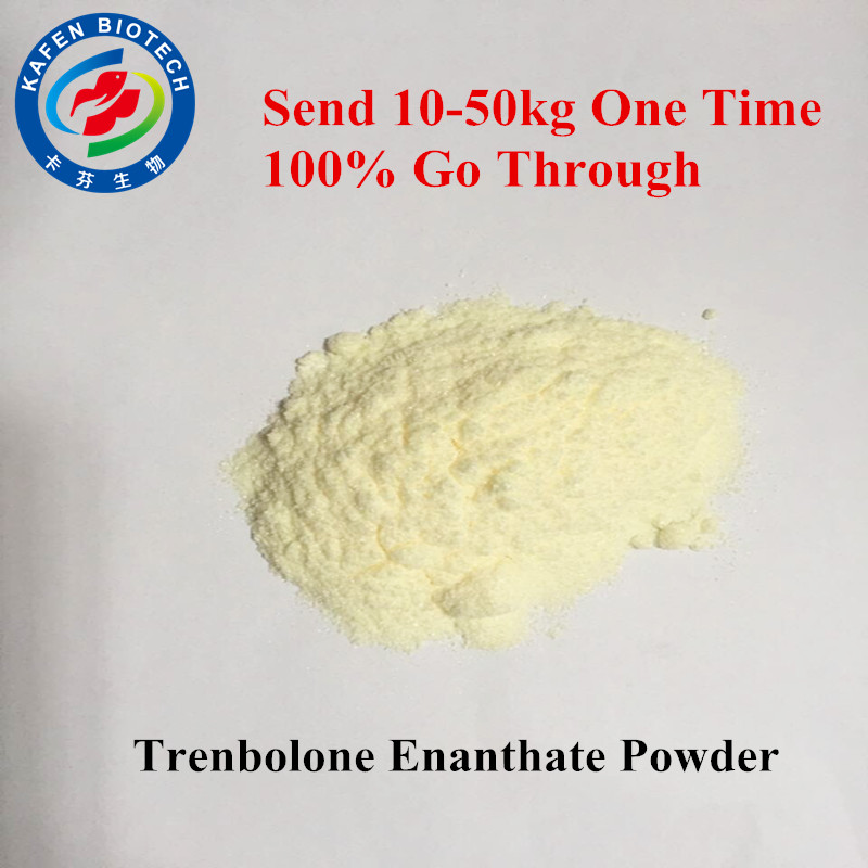 Raw Steroids Hormone Tren E / Parabolan / Trenbolone Enanthate For Male Muscle Promoting