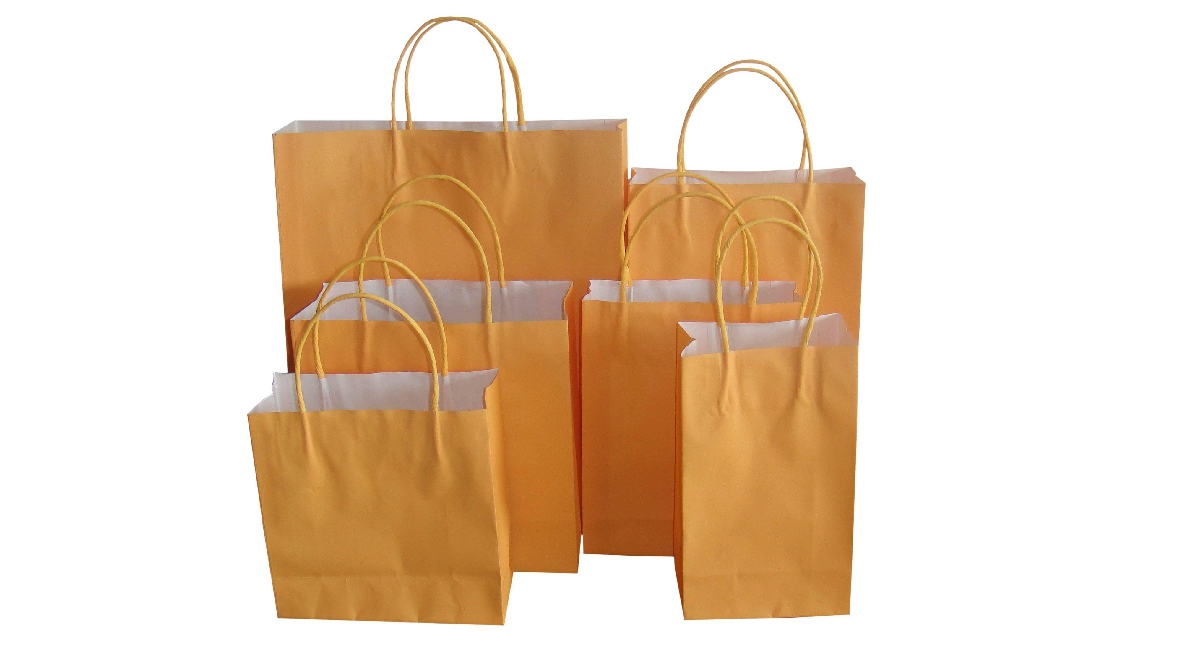 PAPER BOX / SHOPPING BAG / PACKAGE BAG