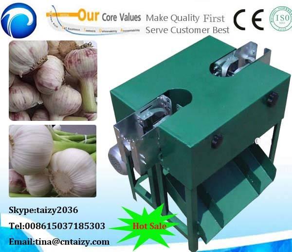 Hot sale Garlic Root Cutting Machine | Small Garlic Root Cutter Machine