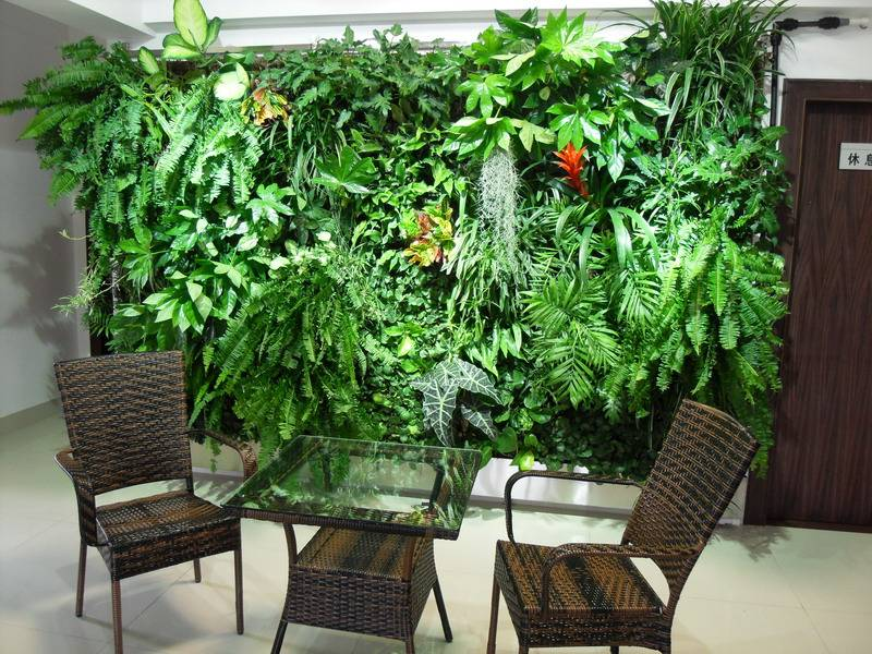 Top quality evergreen artificial plant wall high imitation fake plant wall for decoration & landscap