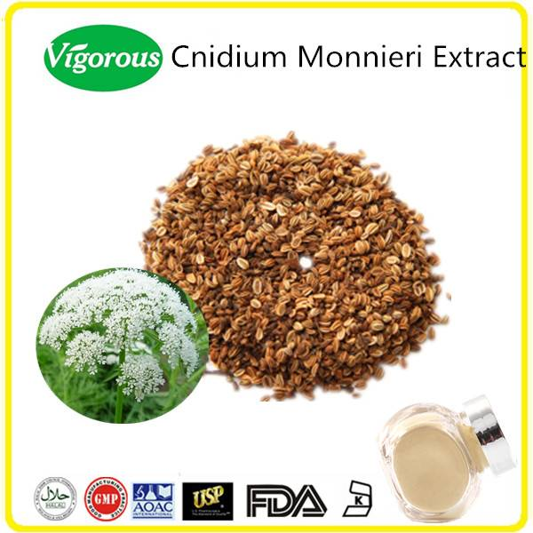 Free sample GMP Kosher Halal natural 10%-98%Osthol Cnidium Monnieri Extract
