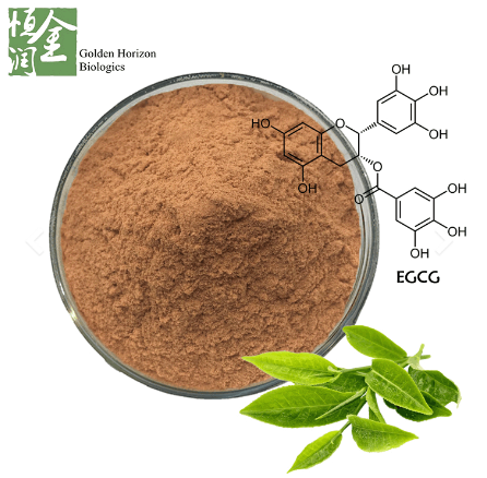 Pure Green Tea Extract 90% EGCG for Weight Loss