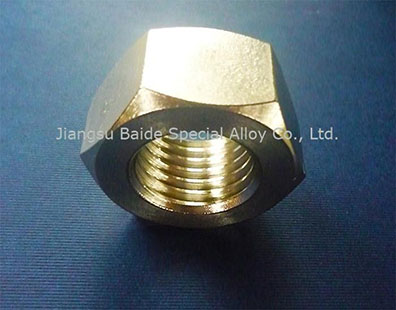 Nickel 201 UNS N02201 Hex Nut