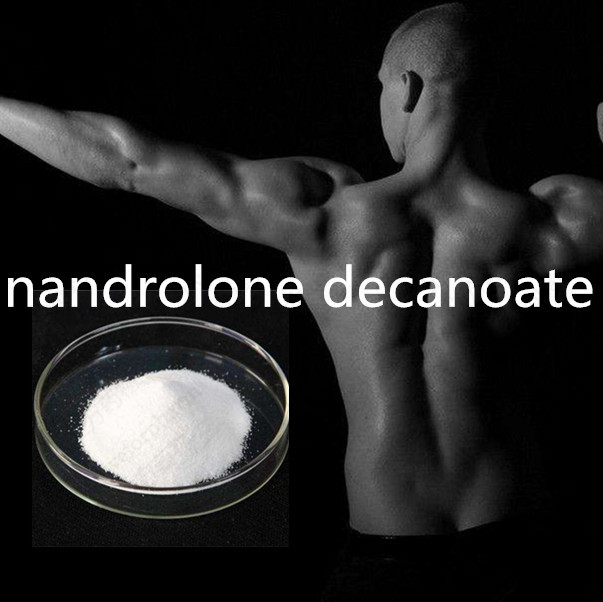 Anabolic Bodybuilding Steroid Powders Nandrolone Decanoate DECA CAS360-70-3