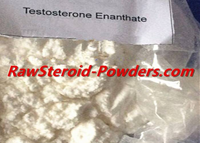 Safe Testosterone Enanthate white Raw Steroid Powders For Muscle Building CAS 315-37-7