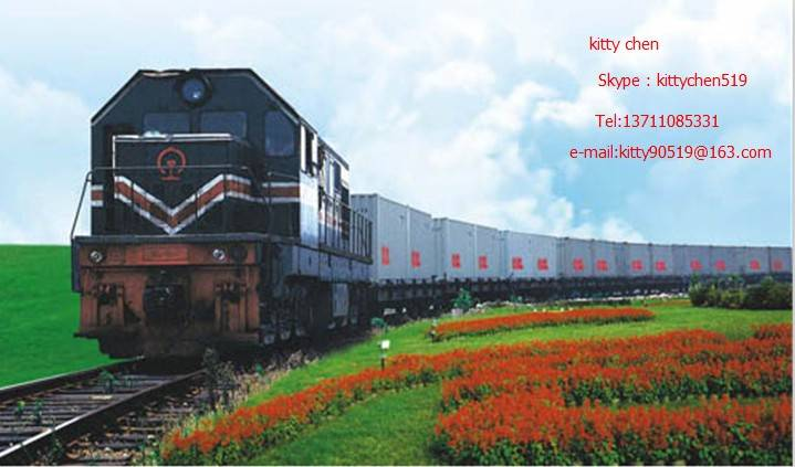 Logisics Services to Russia Moscow Novosibirsk Yekaterinbury Khabarovsk Railway Freight DDP Shipping