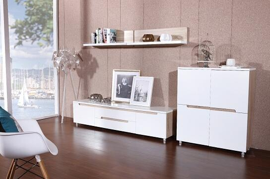 Living room furniture sets , TV stands , display cabinet , shelf