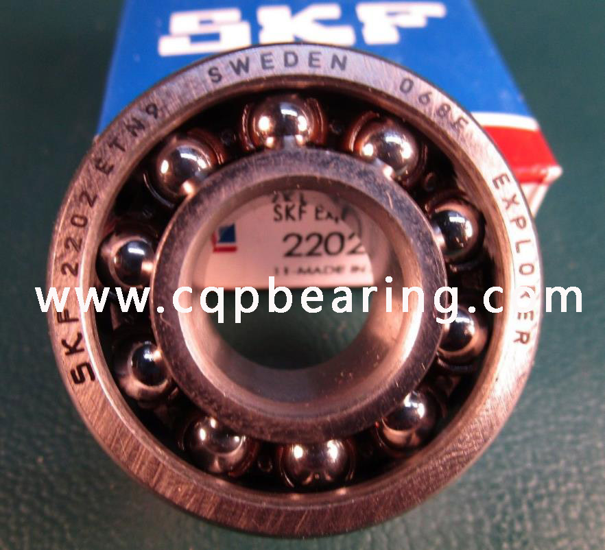 SKF Competitive Price Self-Aligning Ball Bearing 2202ETN9