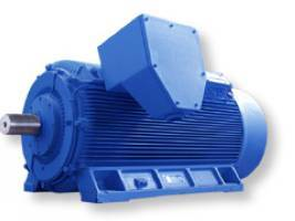 High-Voltage Compact Series Squirrel-Cage Induction Motor