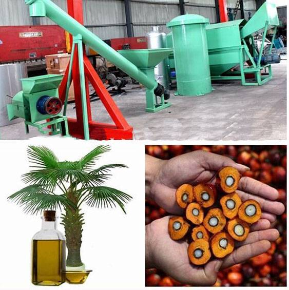 Professional Palm Oil Processing Plant