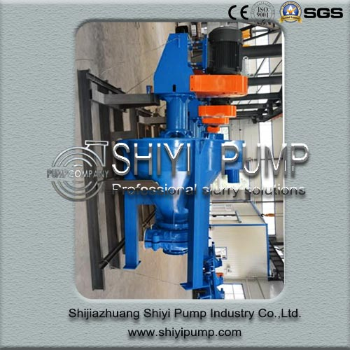 Centrifugal Vertical Mining Heavy Duty Water Treatment Froth Pump